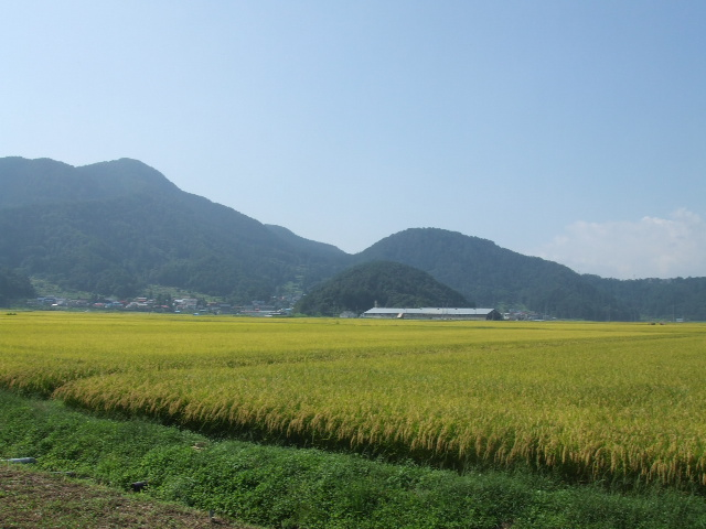 木島平:田園風景