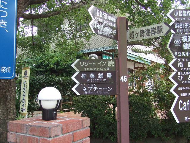 城ヶ崎海岸駅:さくら並木